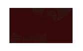 logo_braincare